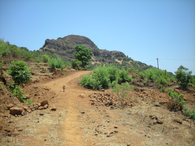 Madhumakarandgad9