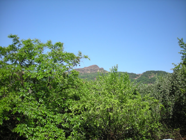 Madhumakarandgad6